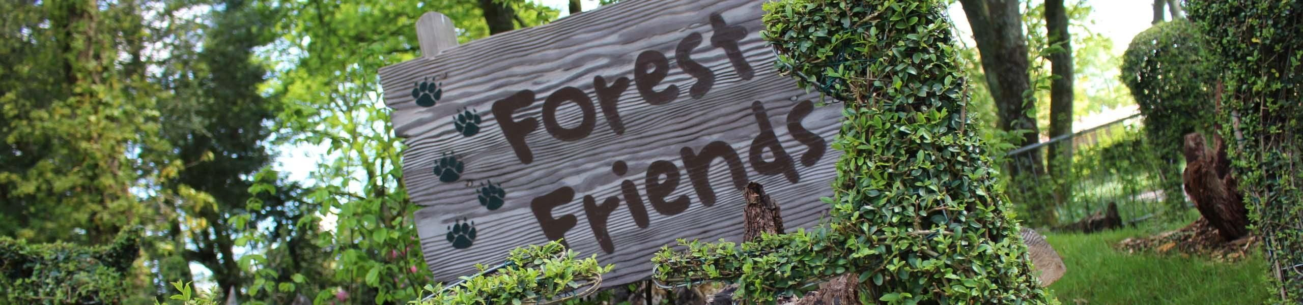 Forest Friend Gardens & Lake | Relax At Paultons Park
