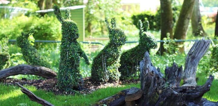 Forest Friends Garden