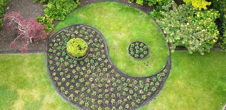 Yin Yang Garden